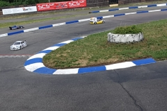 F1 DM